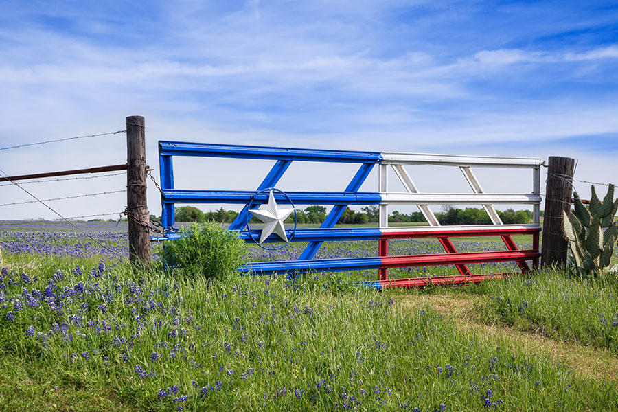 texas themed gate into field